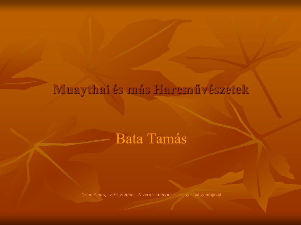 Muaythai és más Harcművészetek Bata Tamás Nyomd meg az F5 gombot. A vetítés irányítása az egér bal gombjával
