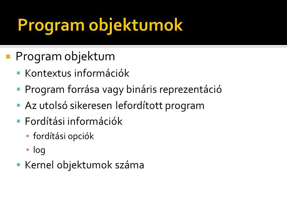  Program objektum  Kontextus információk  Program forrása vagy bináris reprezentáció  Az utolsó sikeresen lefordított program  Fordítási információk ▪ fordítási opciók ▪ log  Kernel objektumok száma