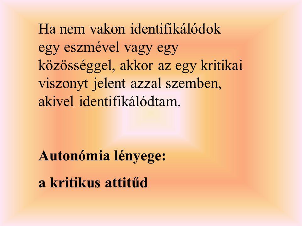 Ha nem vakon identifikálódok egy eszmével vagy egy közösséggel, akkor az egy kritikai viszonyt jelent azzal szemben, akivel identifikálódtam. Autonómi