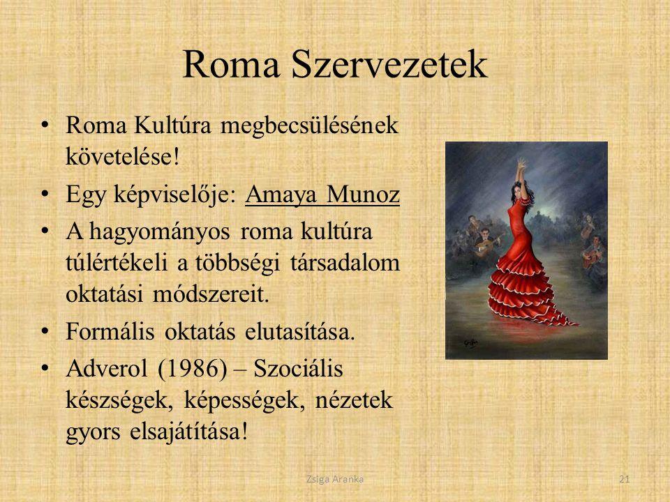 Roma Szervezetek Roma Kultúra megbecsülésének követelése.