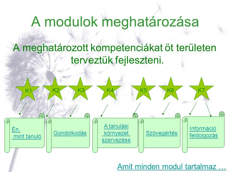 A modulok meghatározása A meghatározott kompetenciákat öt területen terveztük fejleszteni. Én, mint tanuló Gondolkodás A tanulási környezet szervezése