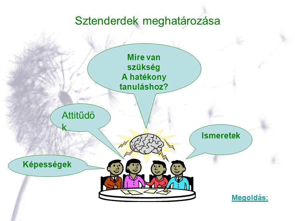 Sztenderdek meghatározása Mire van szükség A hatékony tanuláshoz? Ismeretek Attitűdö k Képességek Megoldás: