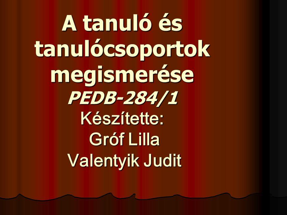 A tanuló és tanulócsoportok megismerése PEDB-284/1 Készítette: Gróf Lilla Valentyik Judit
