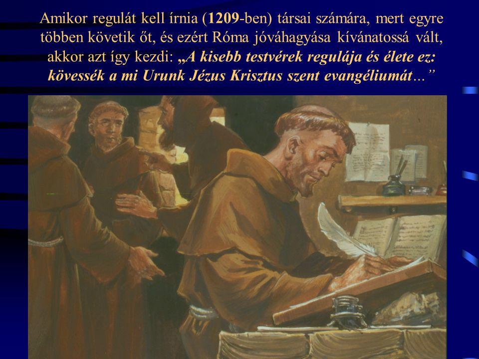 """A fiatal Ferenc az élet értelme után kutatva az Evangéliumba ütközik. Felszabadultan fellélegzik, mert az évszázadok távolából rátalál arra, aki """"kezd"""