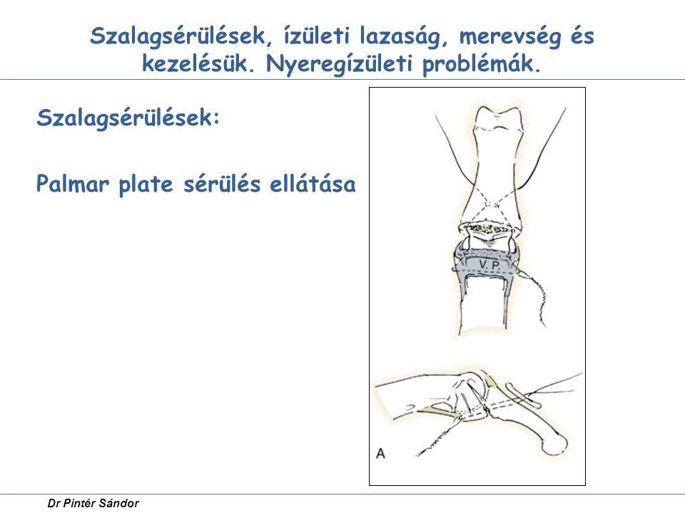 Szalagsérülések, ízületi lazaság, merevség és kezelésük. Nyeregízületi problémák. Szalagsérülések: Palmar plate sérülés ellátása Dr Pintér Sándor
