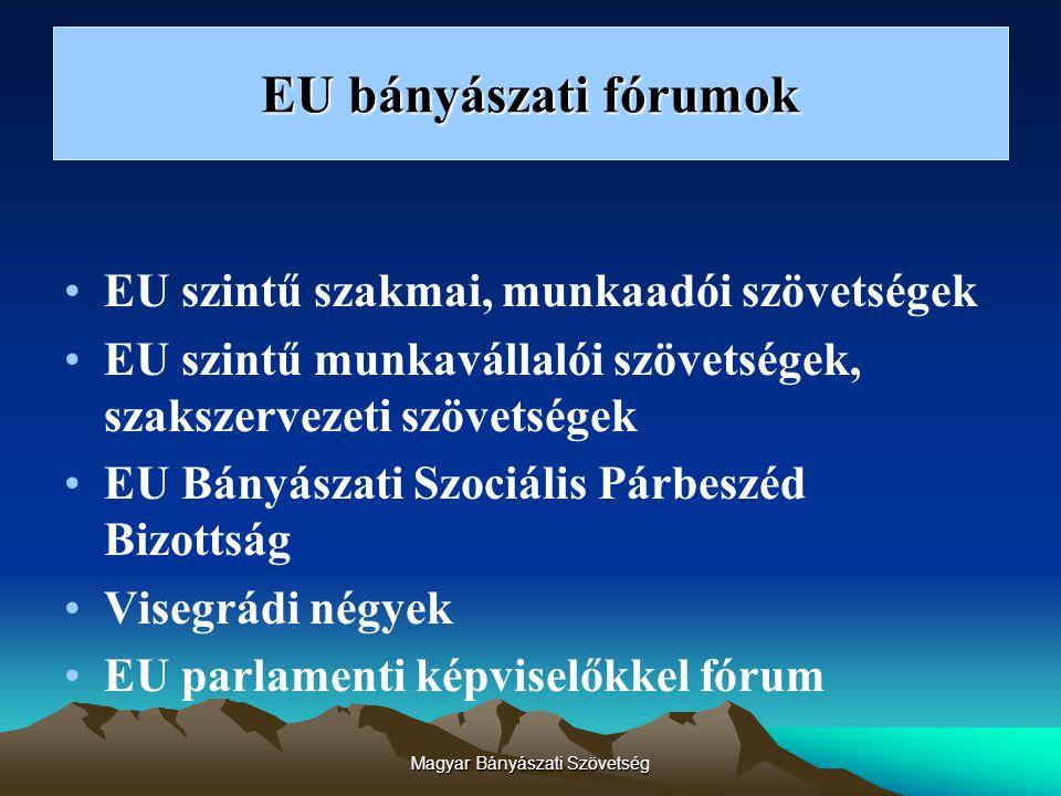 Magyar Bányászati Szövetség EU bányászati fórumok EU szintű szakmai, munkaadói szövetségek EU szintű munkavállalói szövetségek, szakszervezeti szövetségek EU Bányászati Szociális Párbeszéd Bizottság Visegrádi négyek EU parlamenti képviselőkkel fórum
