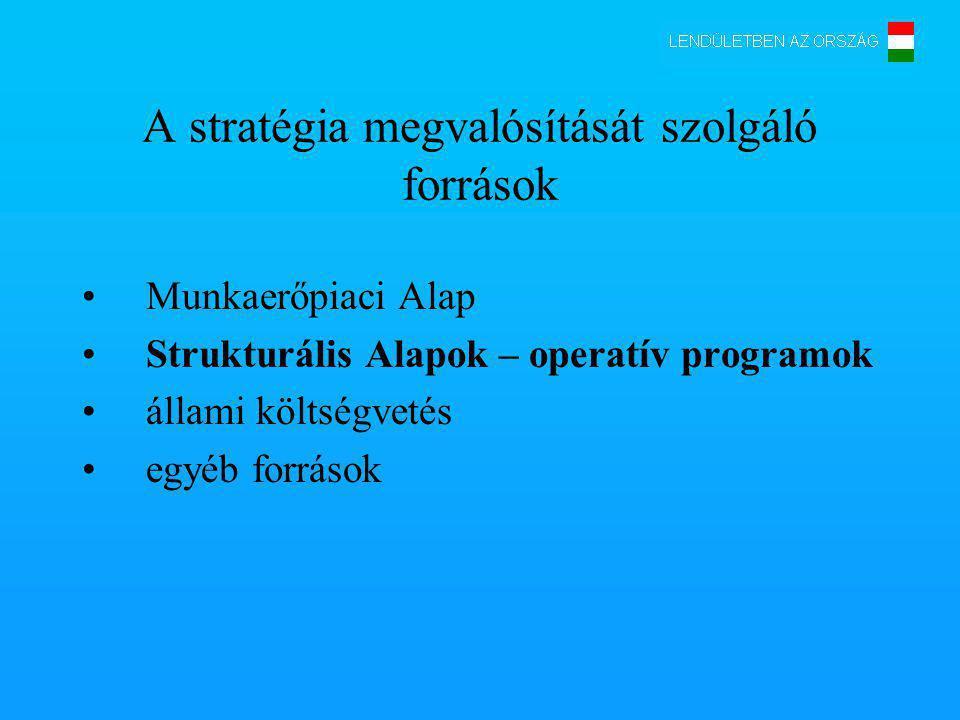 A stratégia megvalósítását szolgáló források Munkaerőpiaci Alap Strukturális Alapok – operatív programok állami költségvetés egyéb források