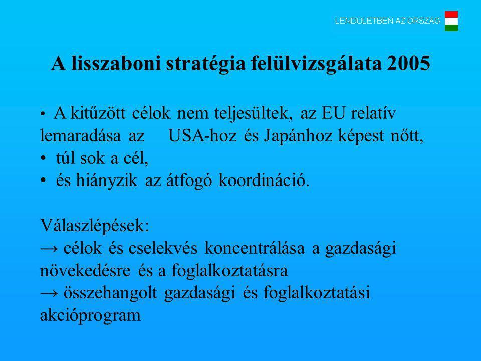 A lisszaboni stratégia felülvizsgálata 2005 A kitűzött célok nem teljesültek, az EU relatív lemaradása az USA-hoz és Japánhoz képest nőtt, túl sok a cél, és hiányzik az átfogó koordináció.