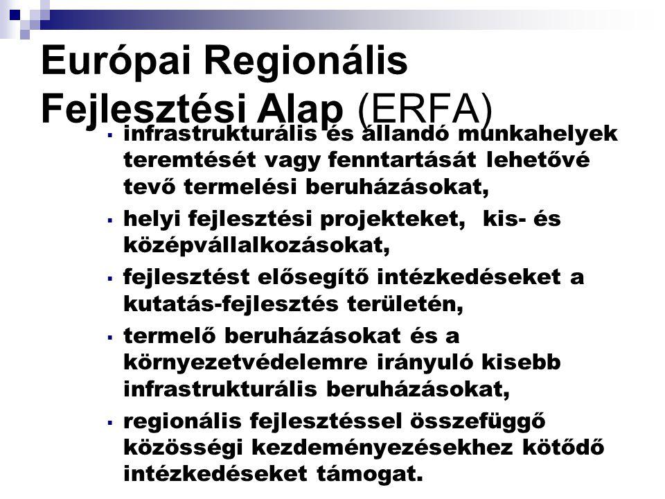 Európai Regionális Fejlesztési Alap (ERFA)  infrastrukturális és állandó munkahelyek teremtését vagy fenntartását lehetővé tevő termelési beruházásokat,  helyi fejlesztési projekteket, kis- és középvállalkozásokat,  fejlesztést elősegítő intézkedéseket a kutatás-fejlesztés területén,  termelő beruházásokat és a környezetvédelemre irányuló kisebb infrastrukturális beruházásokat,  regionális fejlesztéssel összefüggő közösségi kezdeményezésekhez kötődő intézkedéseket támogat.