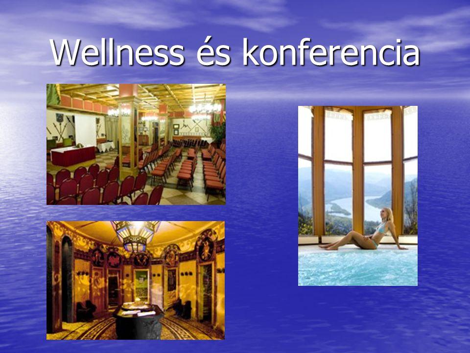 Wellness és konferencia