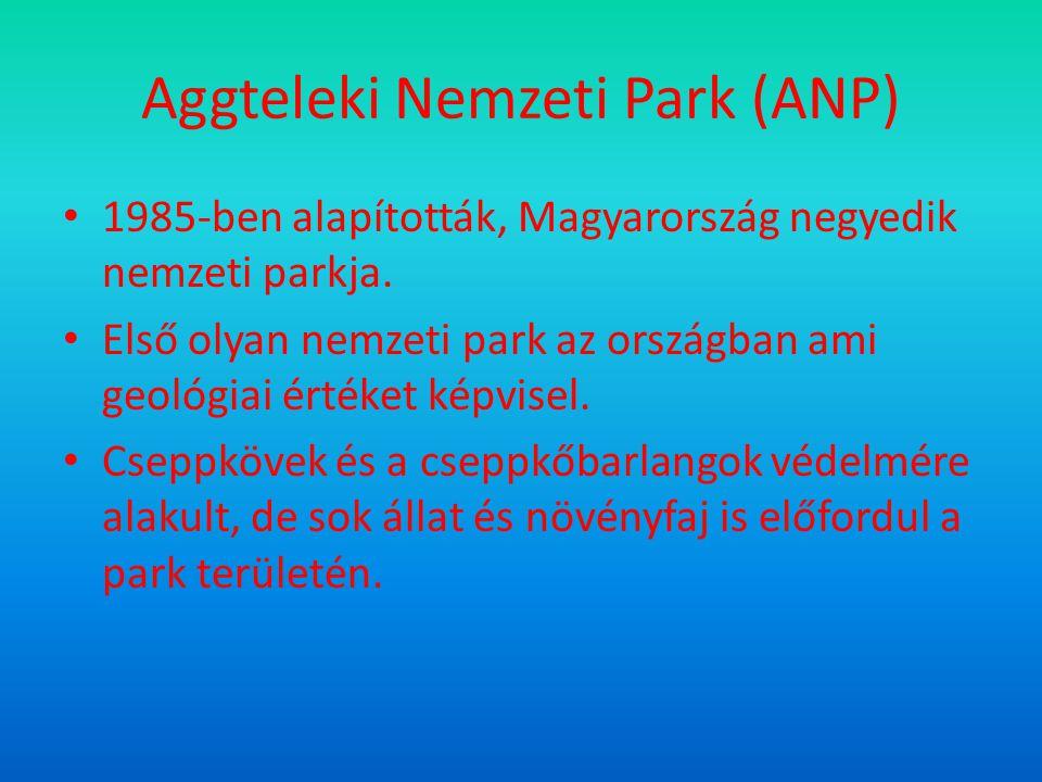 Aggteleki Nemzeti Park (ANP) 1985-ben alapították, Magyarország negyedik nemzeti parkja.
