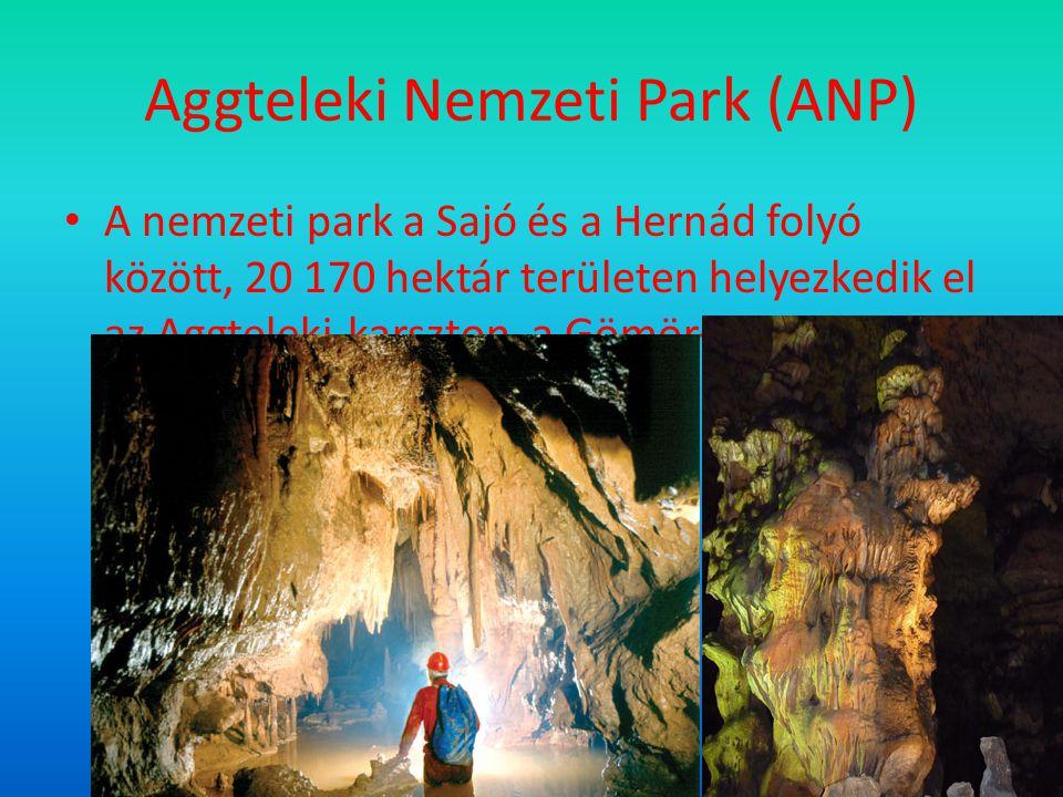 Aggteleki Nemzeti Park (ANP) A nemzeti park a Sajó és a Hernád folyó között, 20 170 hektár területen helyezkedik el az Aggteleki-karszton, a Gömör–Tornai- karszt magyarországi részén.