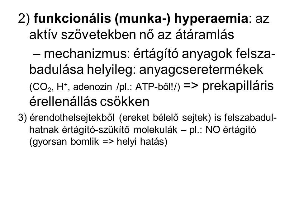 2) funkcionális (munka-) hyperaemia: az aktív szövetekben nő az átáramlás – mechanizmus: értágító anyagok felsza- badulása helyileg: anyagcsereterméke