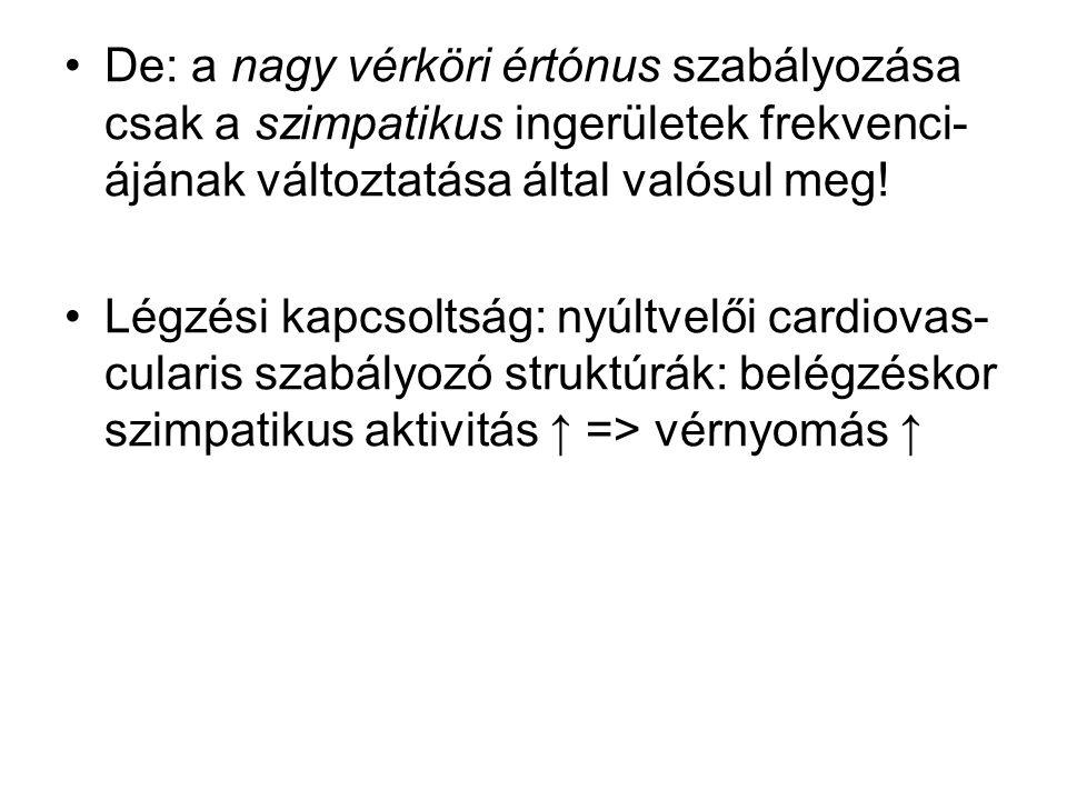 De: a nagy vérköri értónus szabályozása csak a szimpatikus ingerületek frekvenci- ájának változtatása által valósul meg! Légzési kapcsoltság: nyúltvel