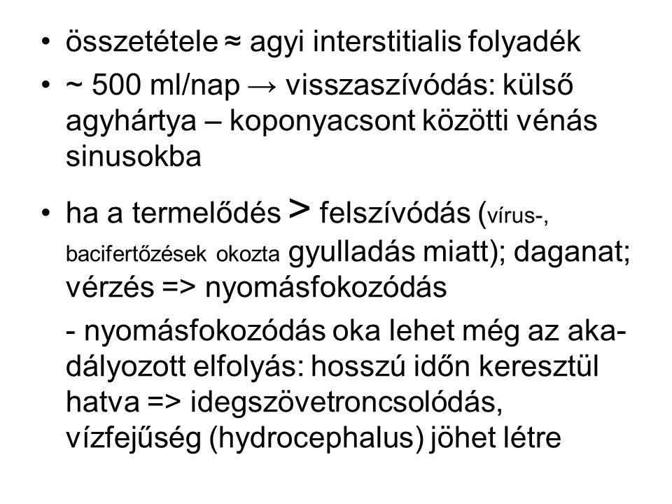 összetétele ≈ agyi interstitialis folyadék ~ 500 ml/nap → visszaszívódás: külső agyhártya – koponyacsont közötti vénás sinusokba ha a termelődés > fel