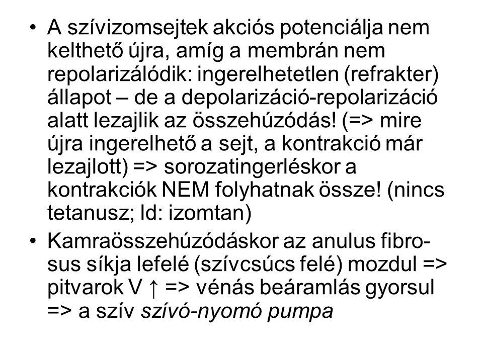 coronariaág(ak) szűkülete => szívizom csökkent vérellátása (ischaemia) => angina pectoris: jellegzetes mellkasi fájdalom + áramlási viszonyok és az érfal belső felszínének megváltozása => thrombusképződés gyakoribb → elzáródás → szívizomelhalás ( myocardialis infarctus )