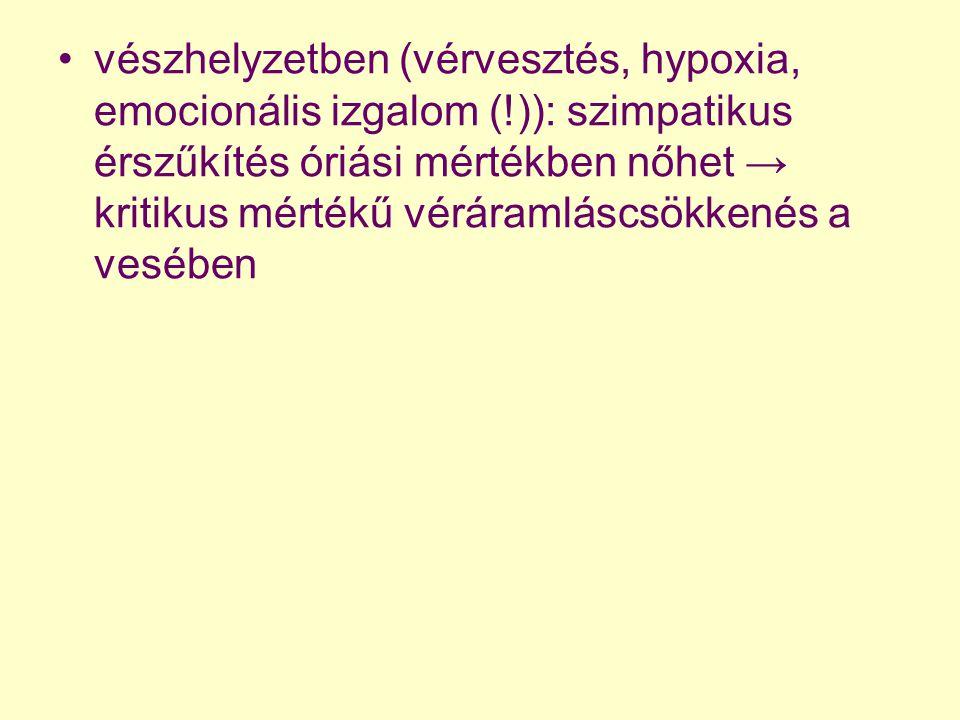 vészhelyzetben (vérvesztés, hypoxia, emocionális izgalom (!)): szimpatikus érszűkítés óriási mértékben nőhet → kritikus mértékű véráramláscsökkenés a