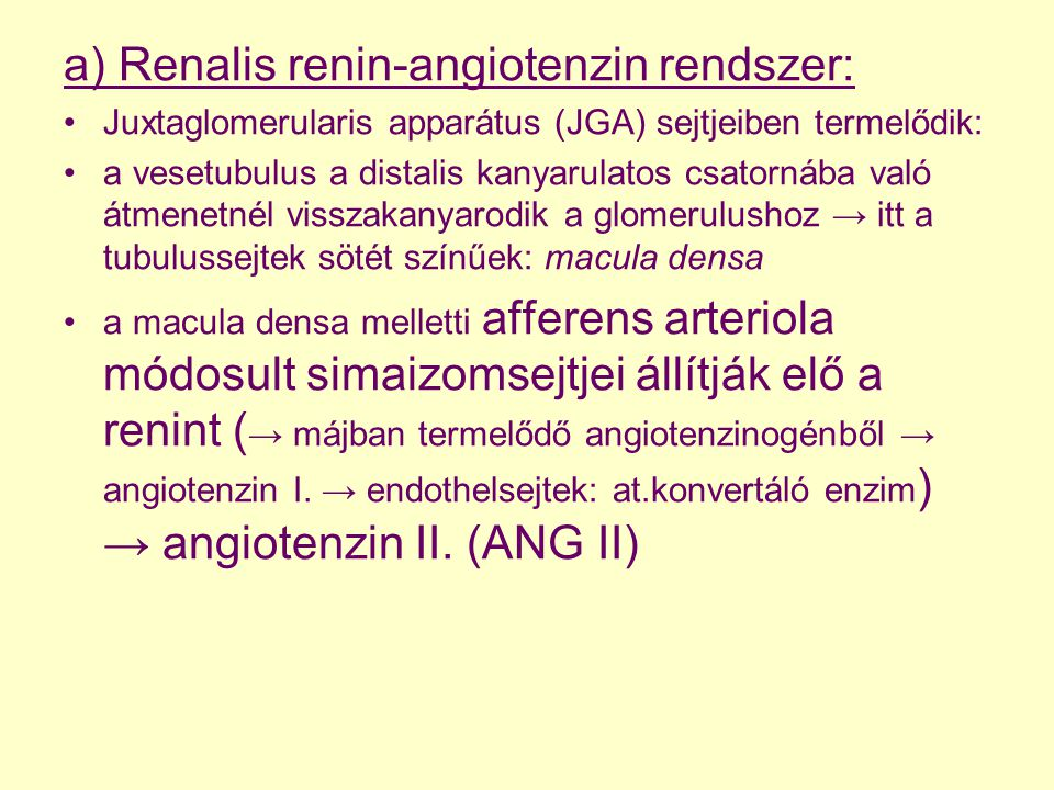 a) Renalis renin-angiotenzin rendszer: Juxtaglomerularis apparátus (JGA) sejtjeiben termelődik: a vesetubulus a distalis kanyarulatos csatornába való