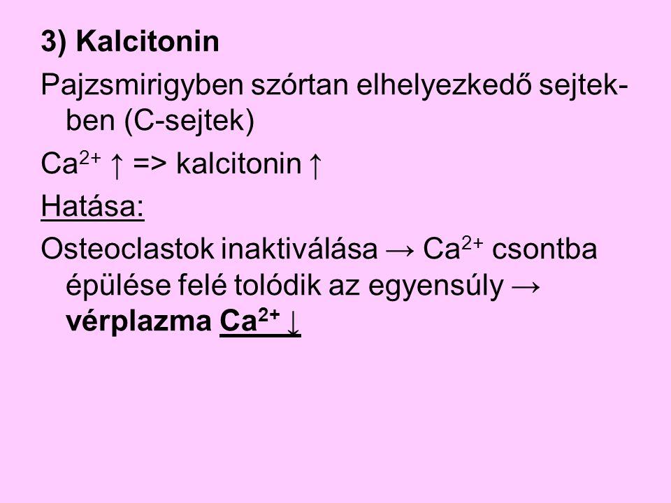 3) Kalcitonin Pajzsmirigyben szórtan elhelyezkedő sejtek- ben (C-sejtek) Ca 2+ ↑ => kalcitonin ↑ Hatása: Osteoclastok inaktiválása → Ca 2+ csontba épü