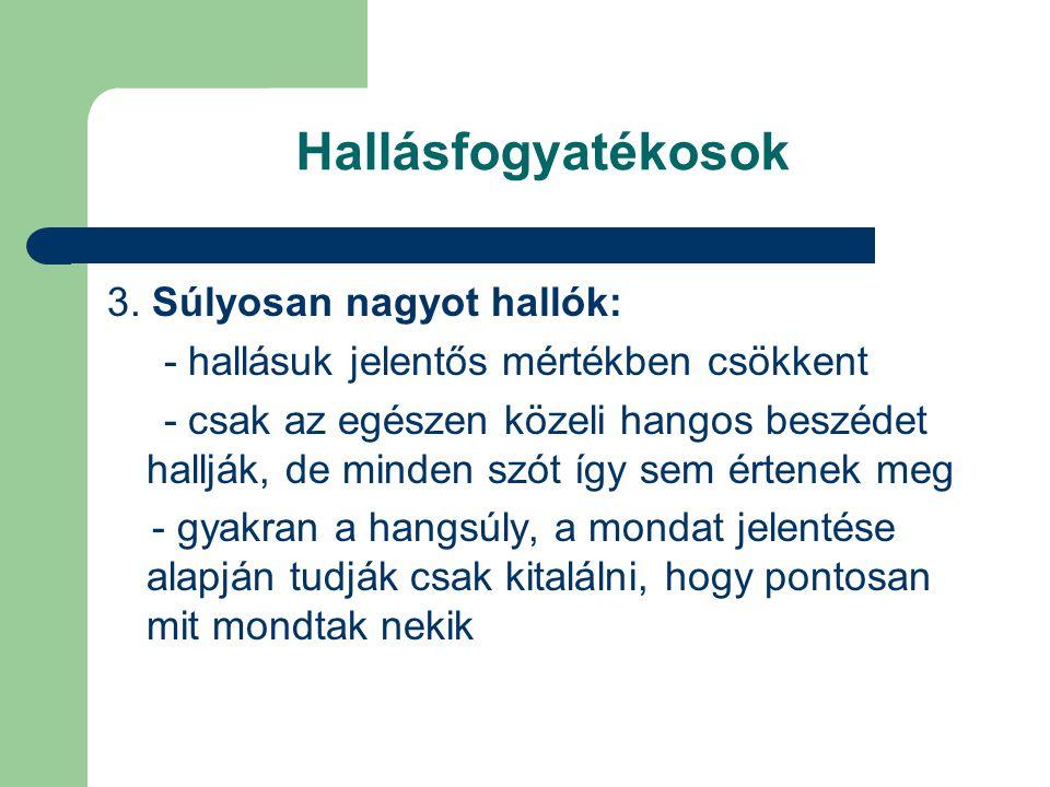 Kommunikáció eszközei, tolmácsolási módok Ujjábécé (daktilológia): A beszéd egyik megjelenési formája.