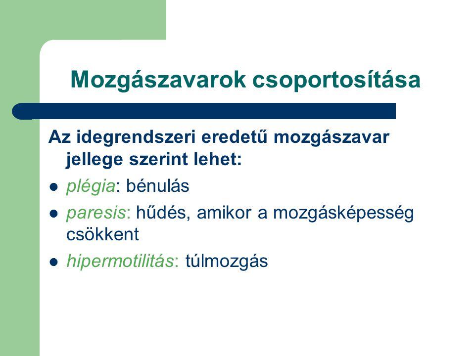 Segédeszköz fogalma és osztályozása Az Eü.Miniszter 47/1999.