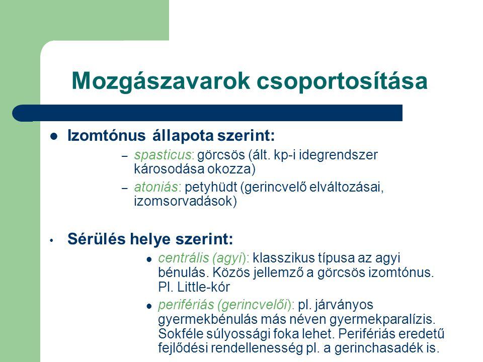 Mozgászavarok csoportosítása Izomtónus állapota szerint: – spasticus: görcsös (ált. kp-i idegrendszer károsodása okozza) – atoniás: petyhüdt (gerincve