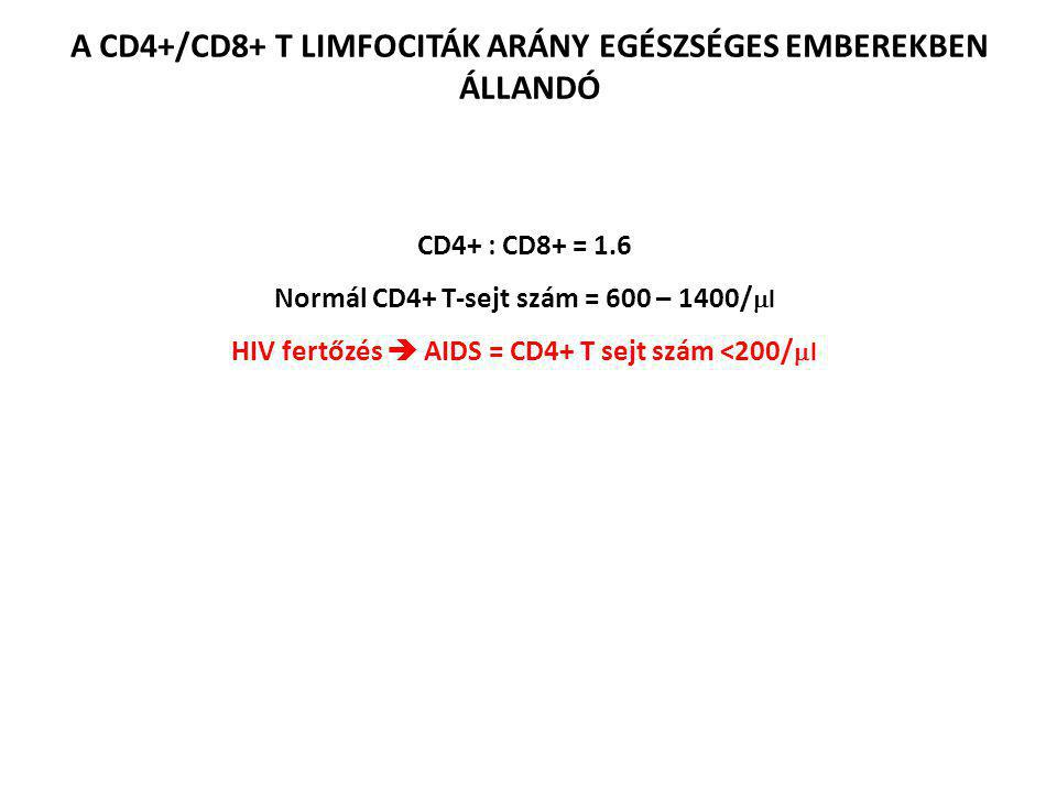 A CD4+/CD8+ T LIMFOCITÁK ARÁNY EGÉSZSÉGES EMBEREKBEN ÁLLANDÓ CD4+ : CD8+ = 1.6 Normál CD4+ T-sejt szám = 600 – 1400/  l HIV fertőzés  AIDS = CD4+ T