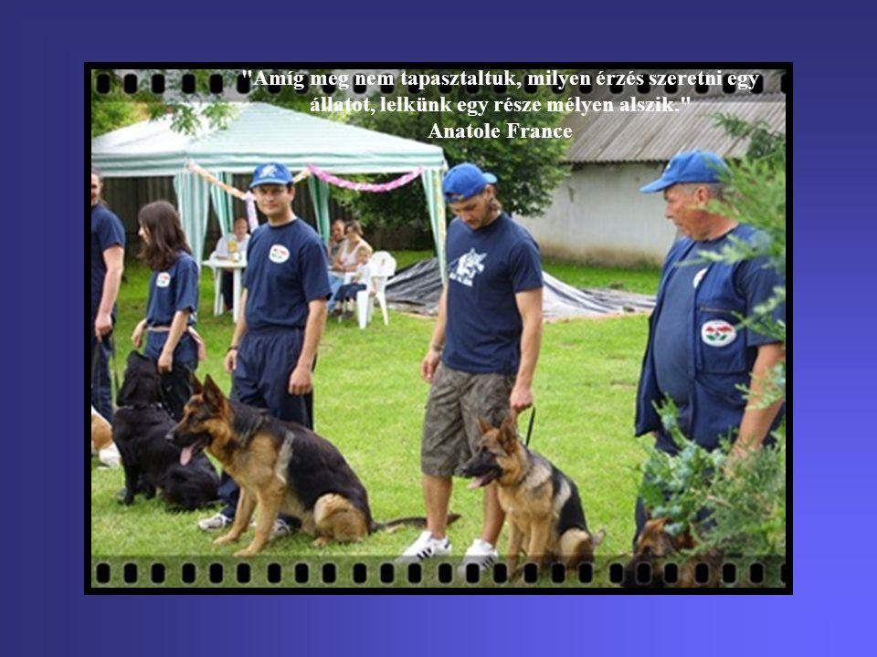 Nincs az a hit, mely töretlen maradna, kivéve egy igazán hűséges kutyáét. Konrad Lorenz
