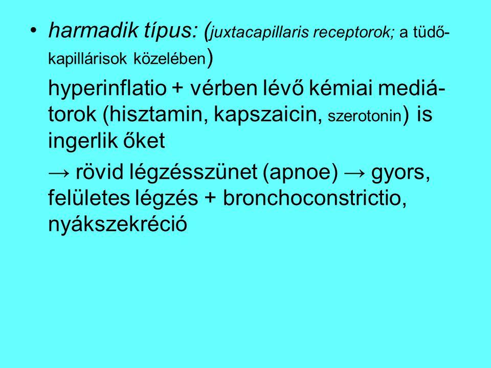 harmadik típus: ( juxtacapillaris receptorok; a tüdő- kapillárisok közelében ) hyperinflatio + vérben lévő kémiai mediá- torok (hisztamin, kapszaicin,