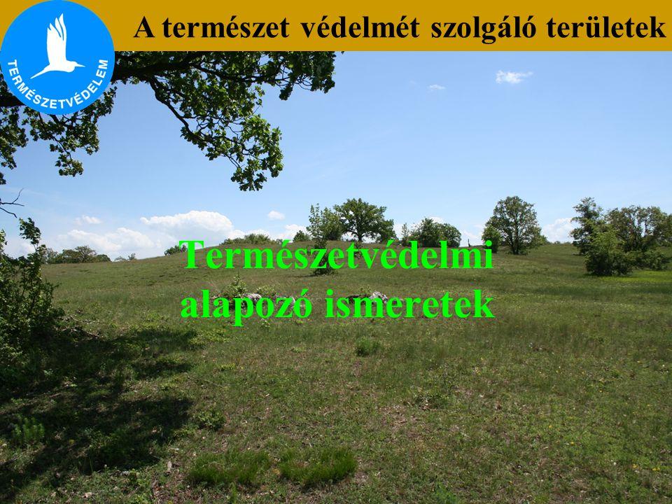 Természetvédelmi alapozó ismeretek A természet védelmét szolgáló területek