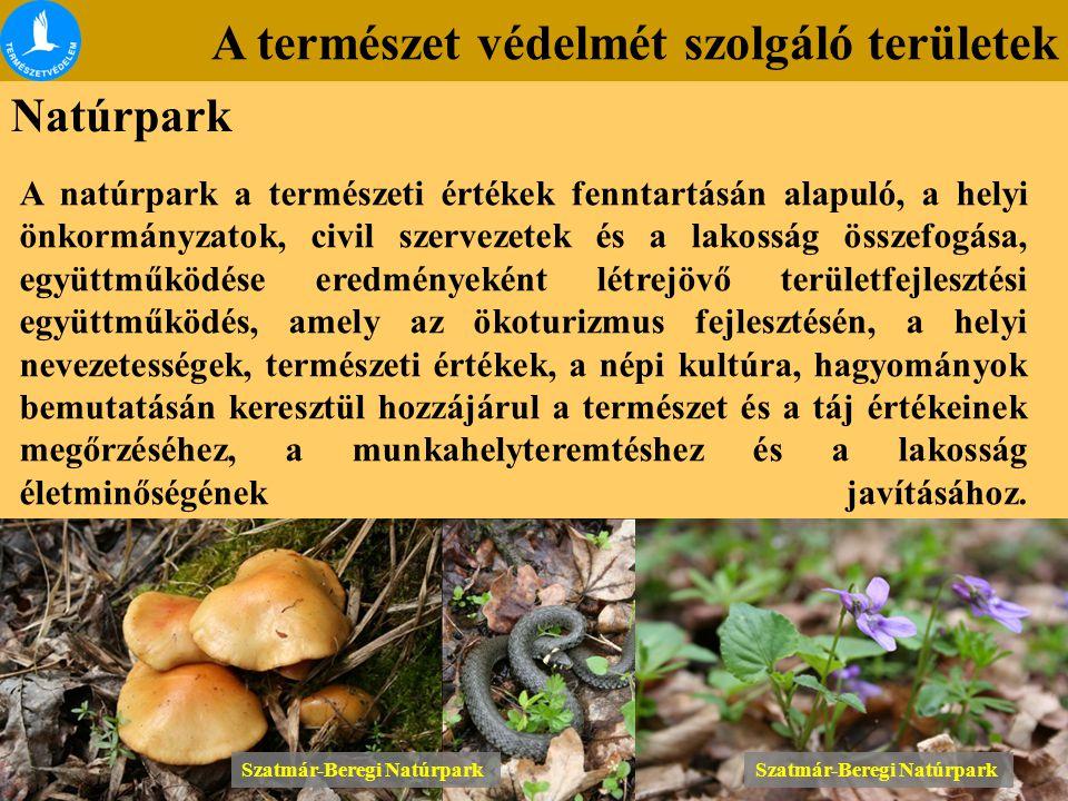 A természet védelmét szolgáló területek Natúrpark A natúrpark a természeti értékek fenntartásán alapuló, a helyi önkormányzatok, civil szervezetek és