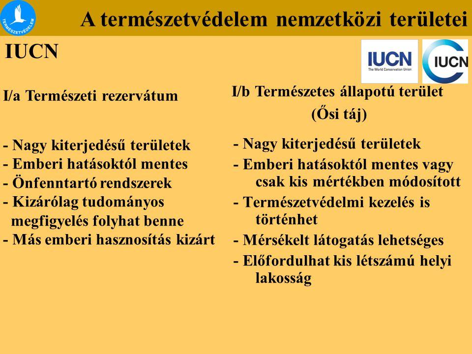 A természetvédelem nemzetközi területei IUCN - Nagy kiterjedésű területek - Emberi hatásoktól mentes - Önfenntartó rendszerek - Kizárólag tudományos m