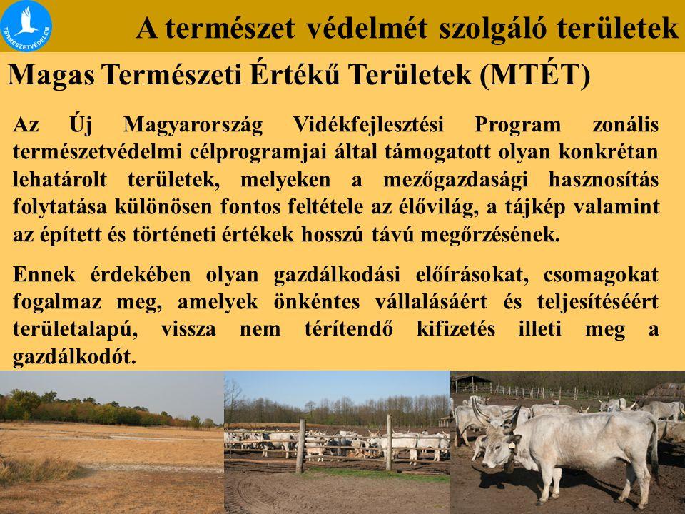 Magas Természeti Értékű Területek (MTÉT) Az Új Magyarország Vidékfejlesztési Program zonális természetvédelmi célprogramjai által támogatott olyan kon