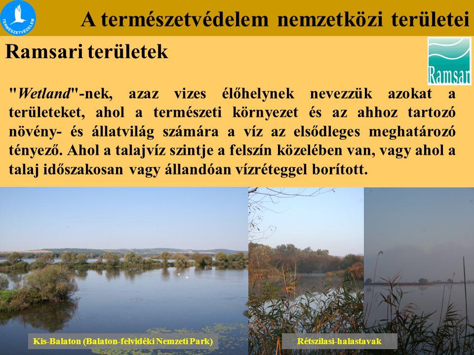 A természetvédelem nemzetközi területei Ramsari területek