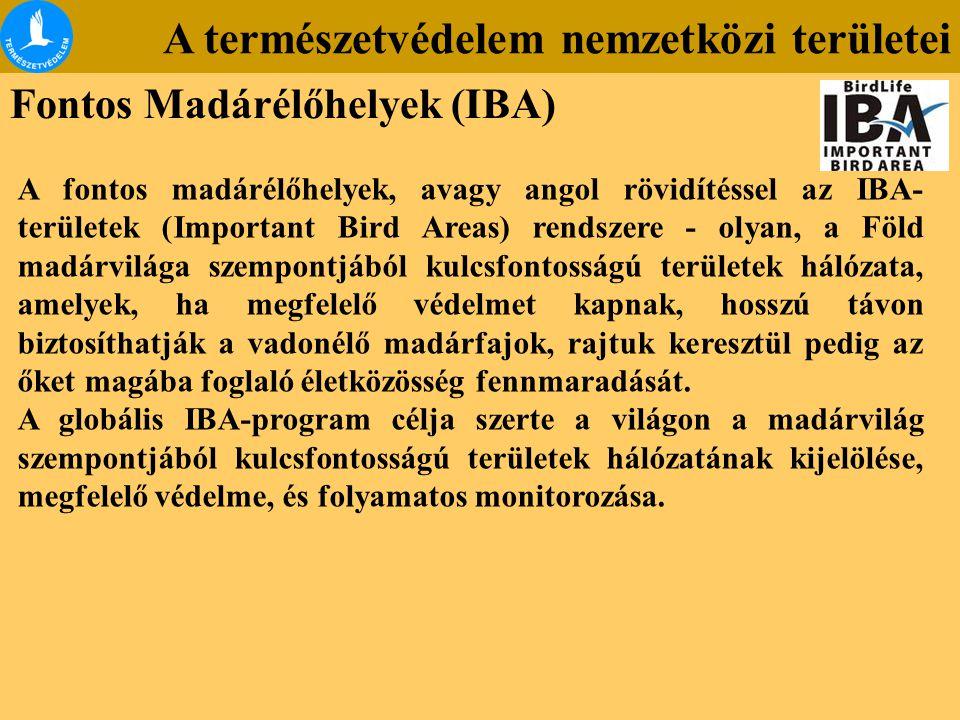 A természetvédelem nemzetközi területei Fontos Madárélőhelyek (IBA) A fontos madárélőhelyek, avagy angol rövidítéssel az IBA- területek (Important Bir