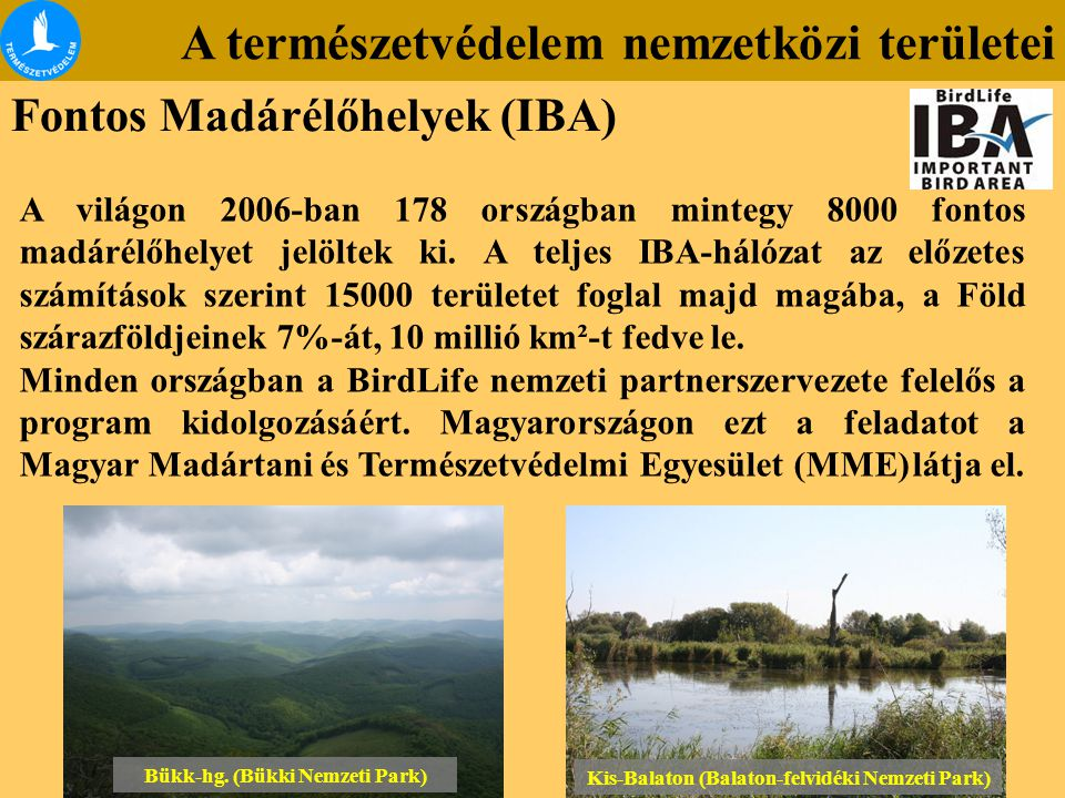A természetvédelem nemzetközi területei Fontos Madárélőhelyek (IBA) A világon 2006-ban 178 országban mintegy 8000 fontos madárélőhelyet jelöltek ki. A