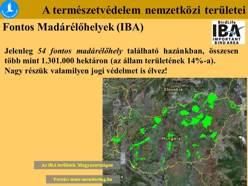 A természetvédelem nemzetközi területei Fontos Madárélőhelyek (IBA) Jelenleg 54 fontos madárélőhely található hazánkban, összesen több mint 1.301.000