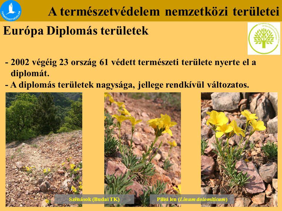A természetvédelem nemzetközi területei Európa Diplomás területek - 2002 végéig 23 ország 61 védett természeti területe nyerte el a diplomát. - A dipl