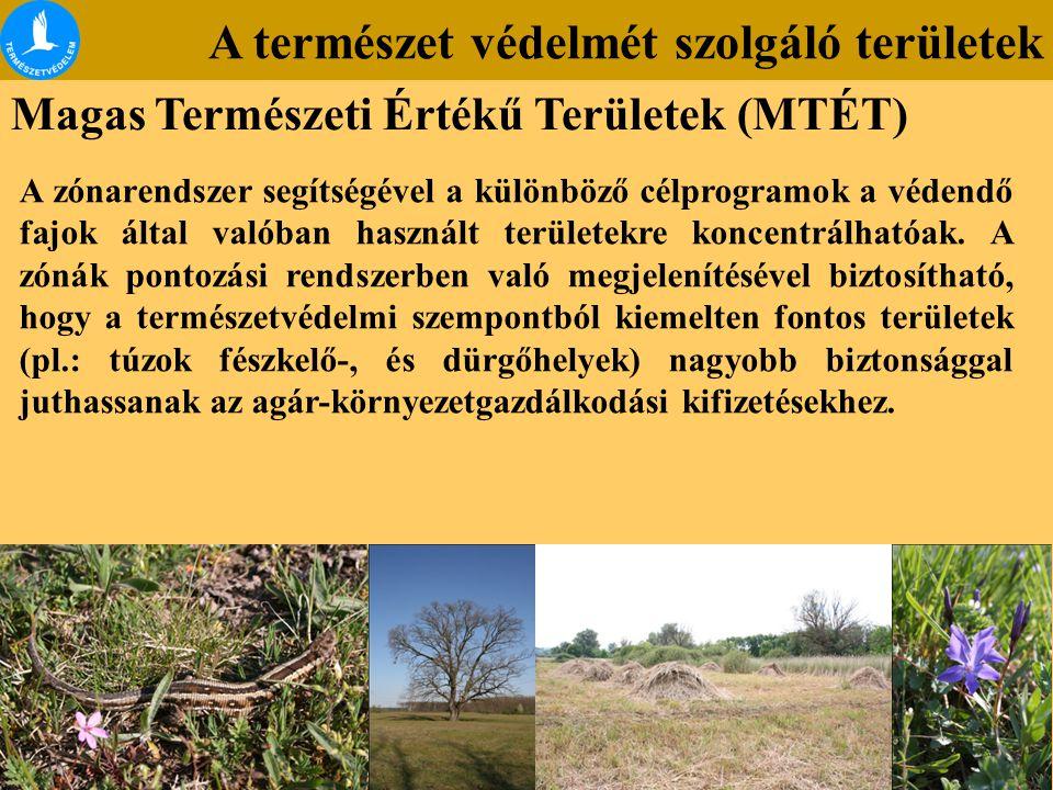 A természet védelmét szolgáló területek Magas Természeti Értékű Területek (MTÉT) A zónarendszer segítségével a különböző célprogramok a védendő fajok