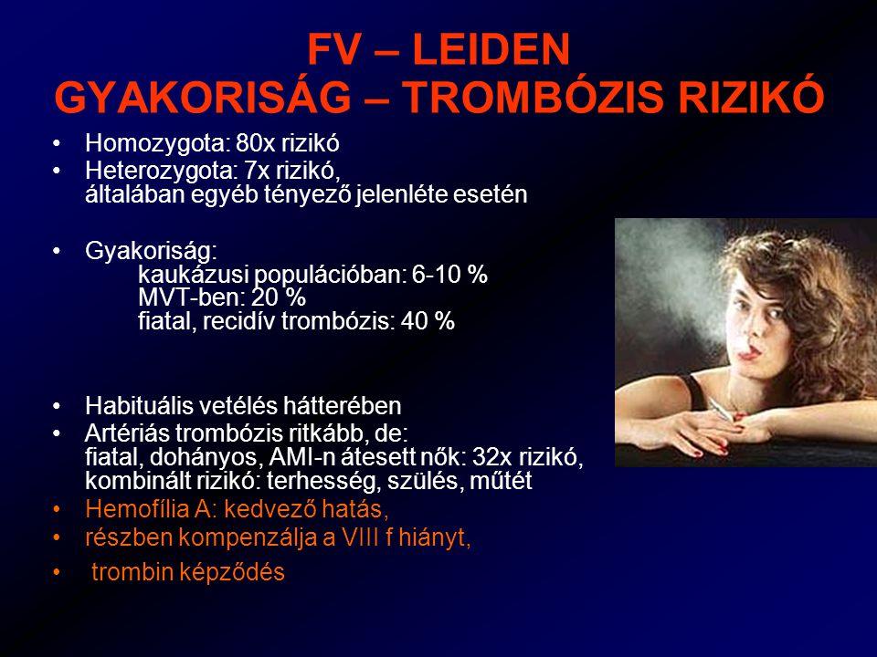 FV – LEIDEN GYAKORISÁG – TROMBÓZIS RIZIKÓ Homozygota: 80x rizikó Heterozygota: 7x rizikó, általában egyéb tényező jelenléte esetén Gyakoriság: kaukázusi populációban: 6-10 % MVT-ben: 20 % fiatal, recidív trombózis: 40 % Habituális vetélés hátterében Artériás trombózis ritkább, de: fiatal, dohányos, AMI-n átesett nők: 32x rizikó, kombinált rizikó: terhesség, szülés, műtét Hemofília A: kedvező hatás, részben kompenzálja a VIII f hiányt, trombin képződés