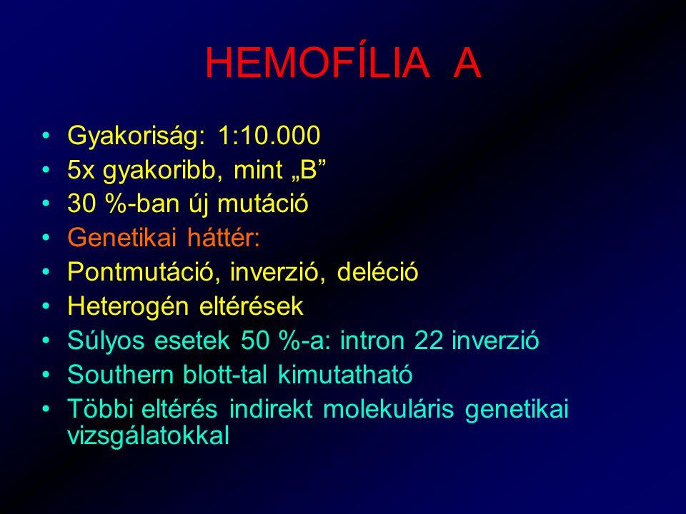 """HEMOFÍLIA A Gyakoriság: 1:10.000 5x gyakoribb, mint """"B 30 %-ban új mutáció Genetikai háttér: Pontmutáció, inverzió, deléció Heterogén eltérések Súlyos esetek 50 %-a: intron 22 inverzió Southern blott-tal kimutatható Többi eltérés indirekt molekuláris genetikai vizsgálatokkal"""