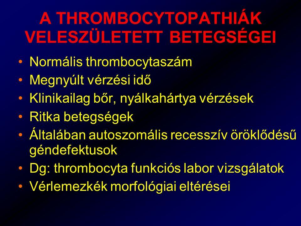 A THROMBOCYTOPATHIÁK VELESZÜLETETT BETEGSÉGEI Normális thrombocytaszám Megnyúlt vérzési idő Klinikailag bőr, nyálkahártya vérzések Ritka betegségek Általában autoszomális recesszív öröklődésű géndefektusok Dg: thrombocyta funkciós labor vizsgálatok Vérlemezkék morfológiai eltérései