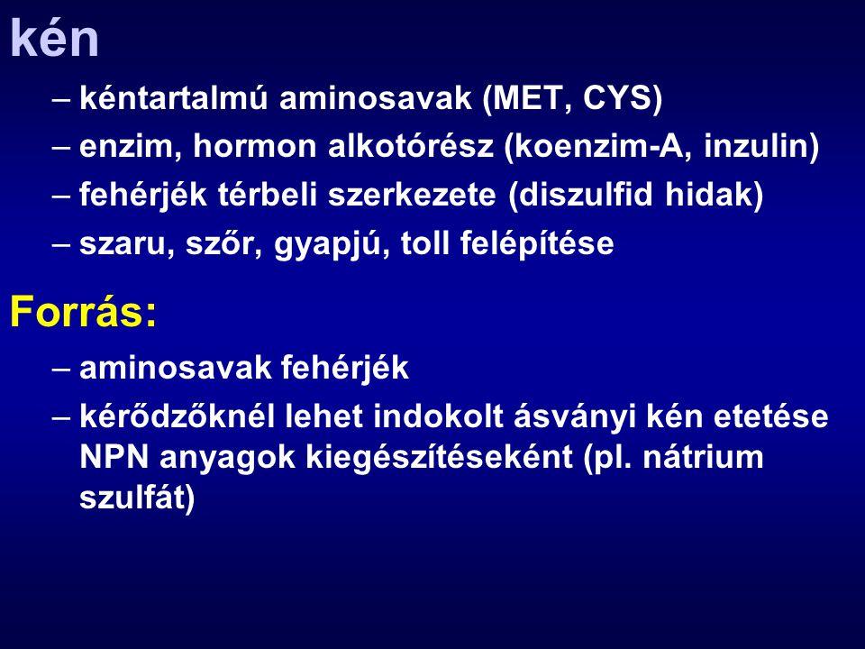 kén –kéntartalmú aminosavak (MET, CYS) –enzim, hormon alkotórész (koenzim-A, inzulin) –fehérjék térbeli szerkezete (diszulfid hidak) –szaru, szőr, gya