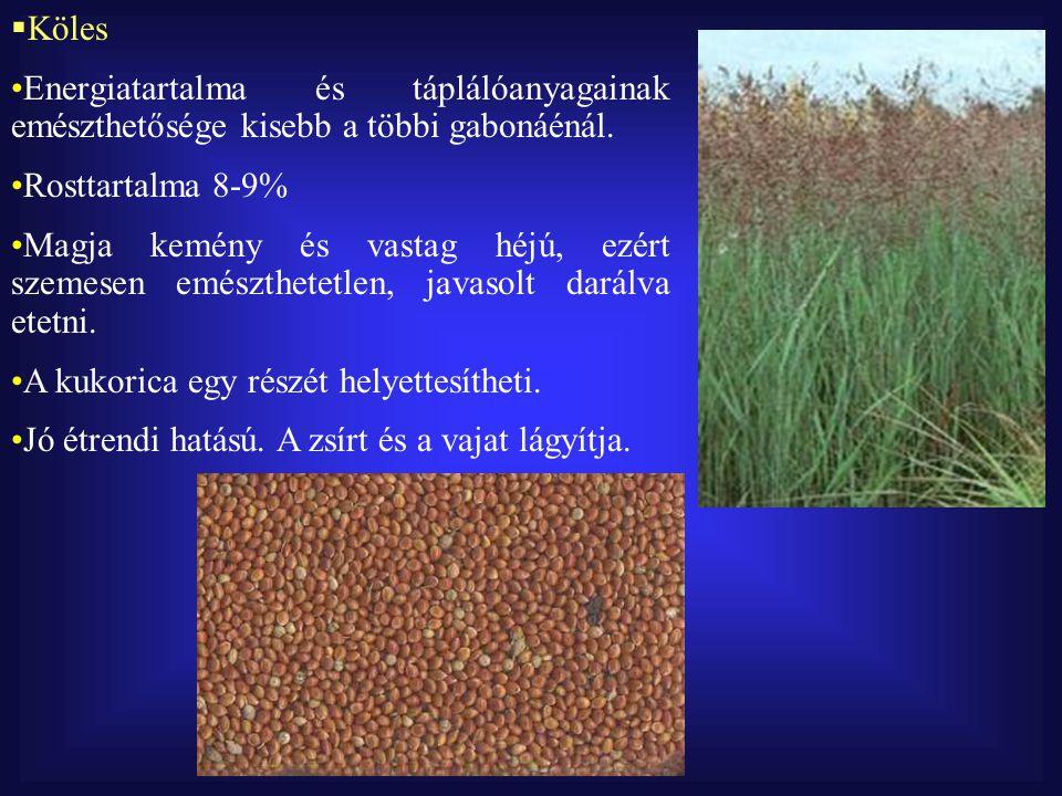  Köles Energiatartalma és táplálóanyagainak emészthetősége kisebb a többi gabonáénál.