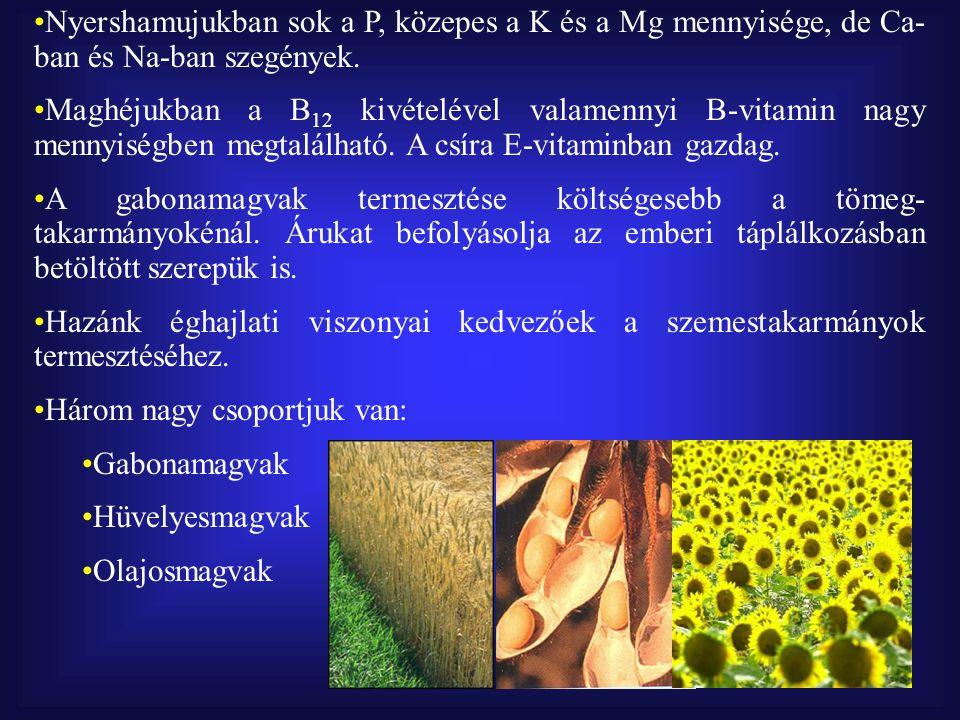 Nyershamujukban sok a P, közepes a K és a Mg mennyisége, de Ca- ban és Na-ban szegények.