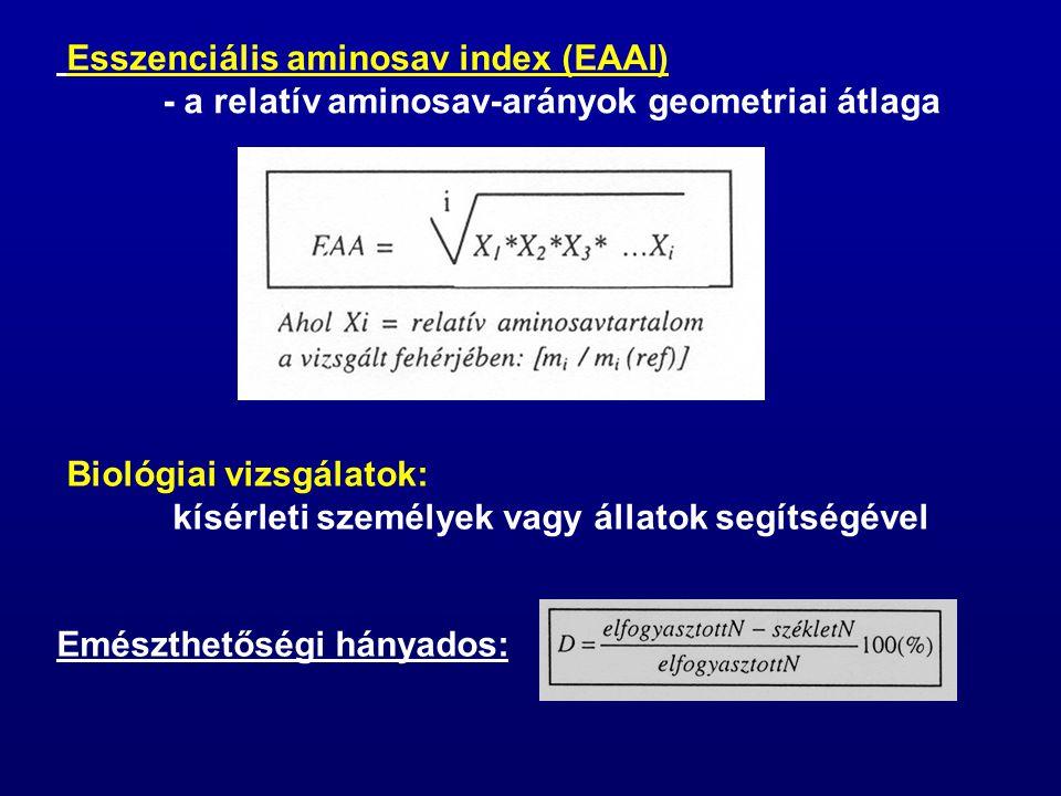 Esszenciális aminosav index (EAAI) - a relatív aminosav-arányok geometriai átlaga Biológiai vizsgálatok: kísérleti személyek vagy állatok segítségével Emészthetőségi hányados:
