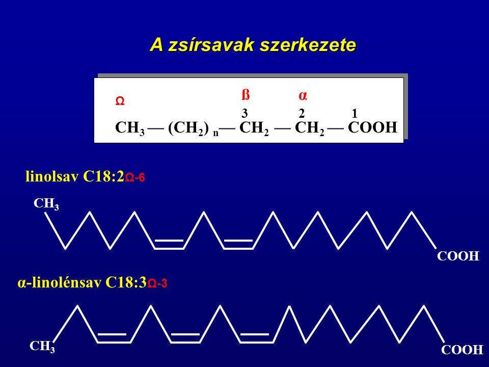 CH 3 — (CH 2 ) n — CH 2 — CH 2 — COOH 123 αß Ω linolsav C18:2 Ω-6 α-linolénsav C18:3 Ω-3 A zsírsavak szerkezete CH 3 COOH