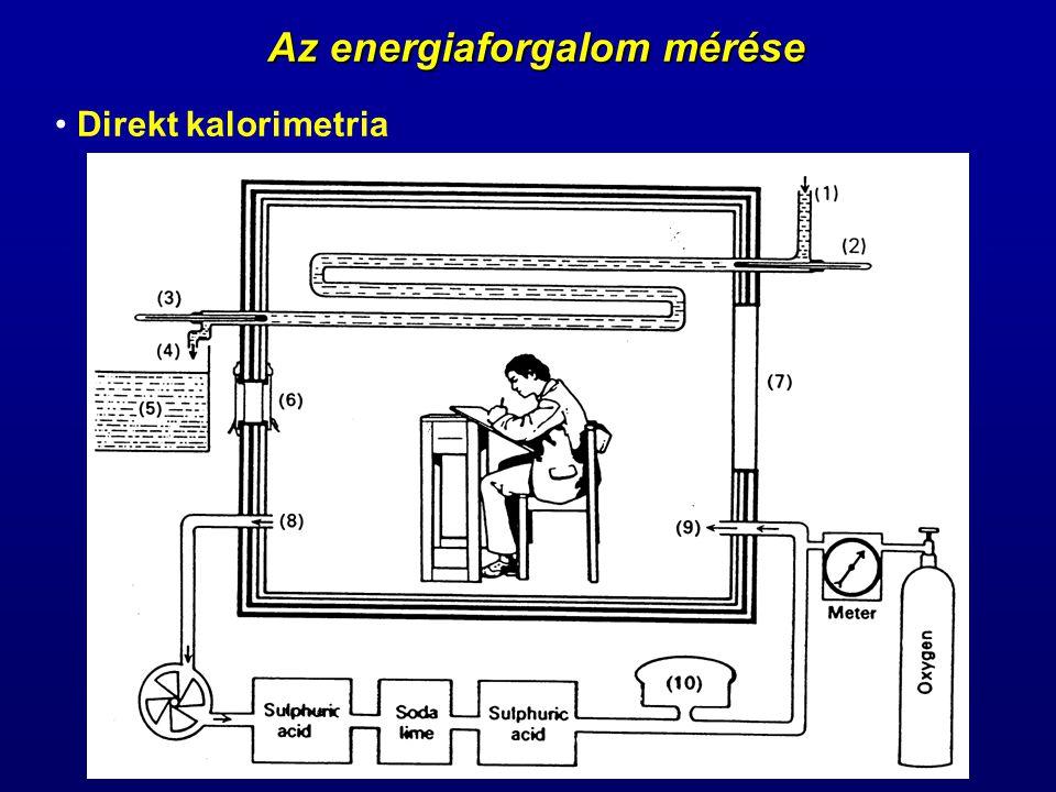 Az energiaforgalom mérése Direkt kalorimetria