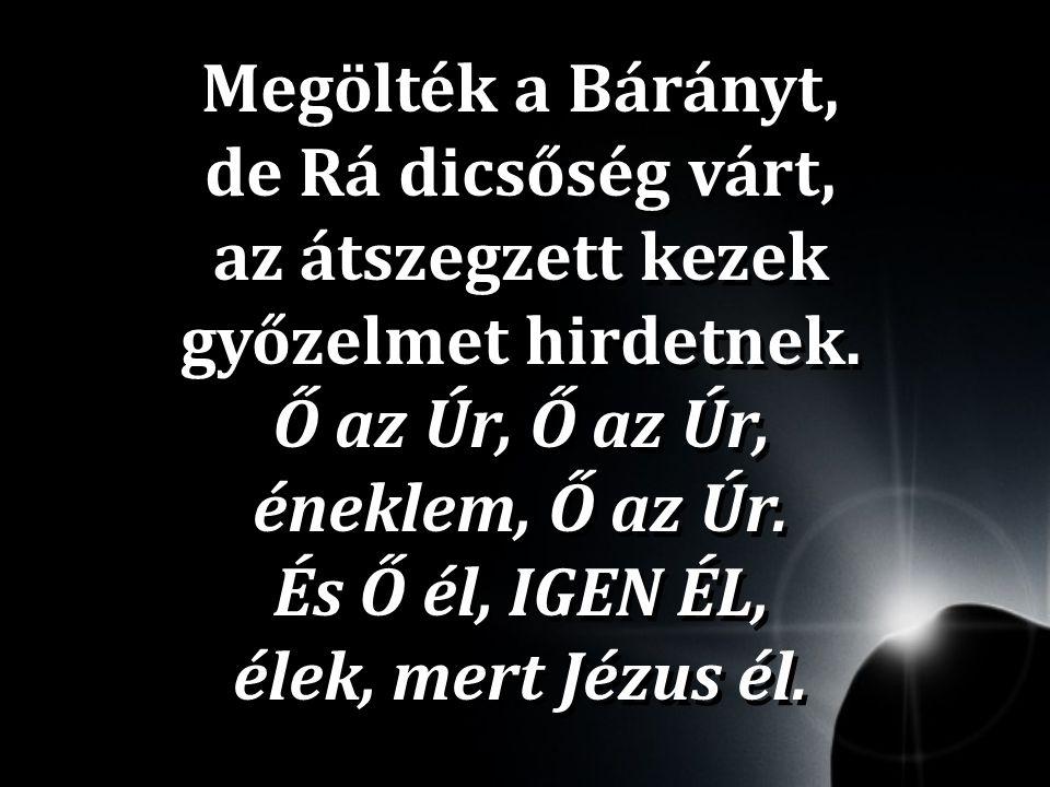 Megölték a Bárányt, de Rá dicsőség várt, az átszegzett kezek győzelmet hirdetnek. Ő az Úr, Ő az Úr, éneklem, Ő az Úr. És Ő él, IGEN ÉL, élek, mert Jéz