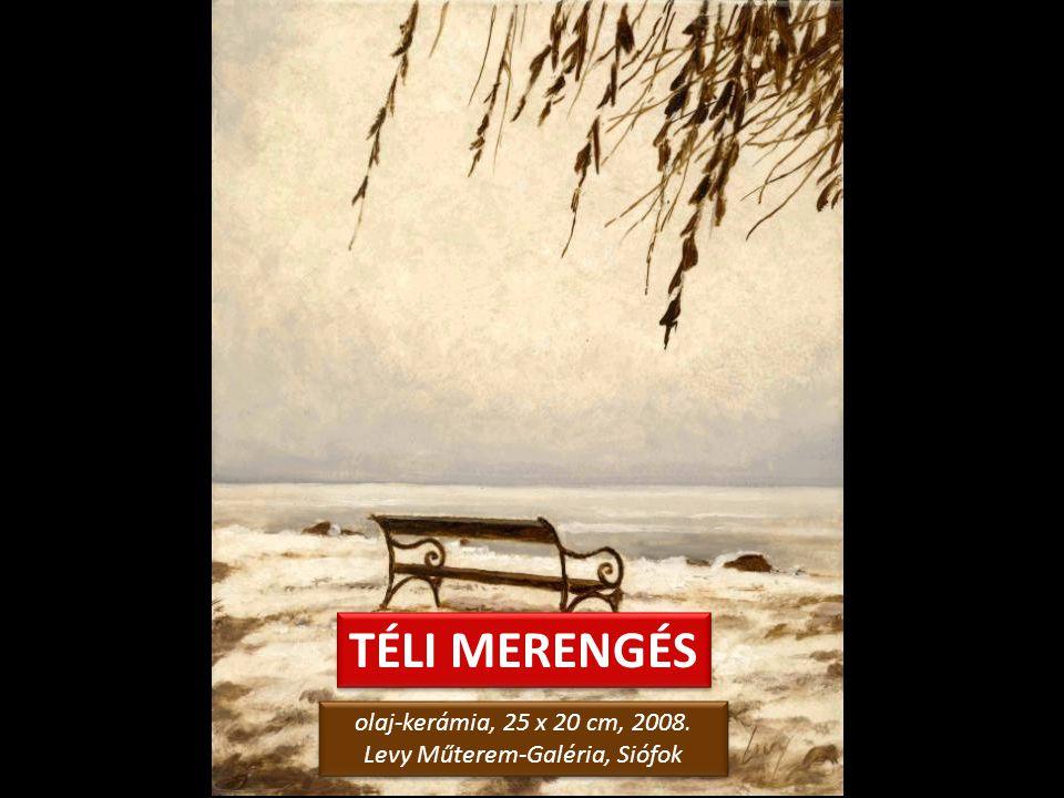 ÁGAK KÖZÖTT 2. olaj-kerámia, 25 x 20 cm, 2008. Levy Műterem-Galéria, Siófok olaj-kerámia, 25 x 20 cm, 2008. Levy Műterem-Galéria, Siófok Tegyünk egy t